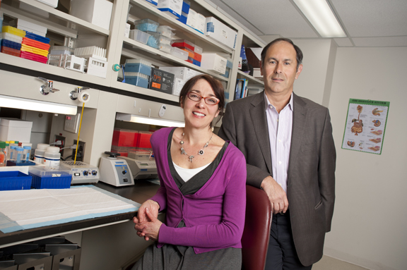 Mount Sinai Hospital to open the largest IBD research unit in Canada