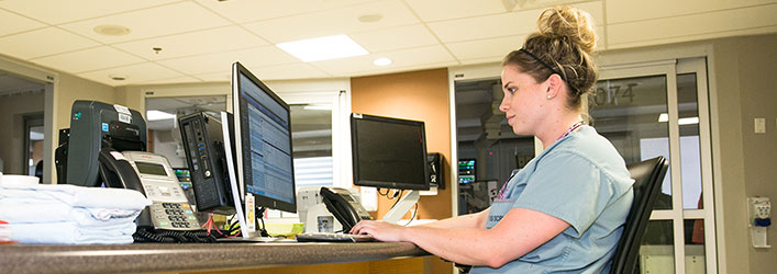 staff member on computer