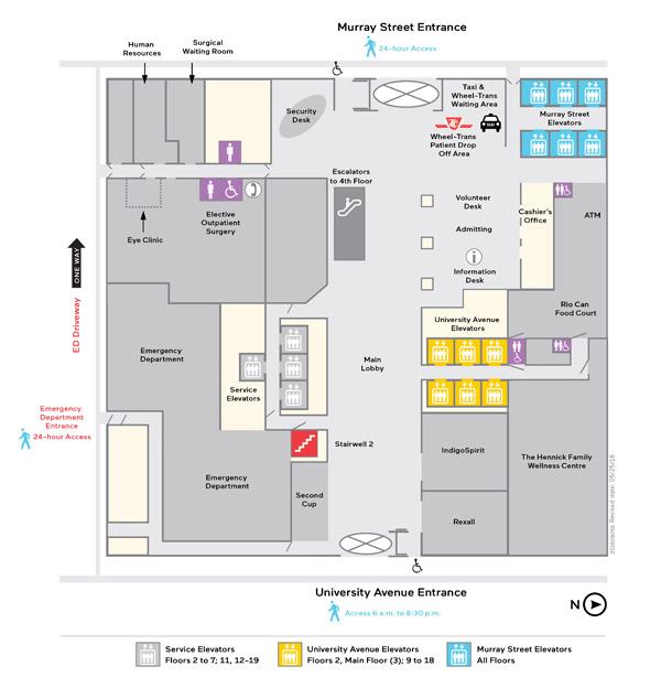 Mount Sinai Hospital Lobby Construction Floor Map